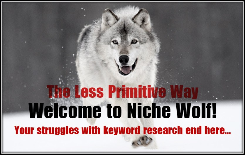 niche wolf keyword research